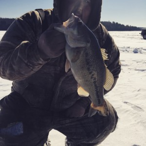 Feb 14 , 2015 Large Mouth Bass