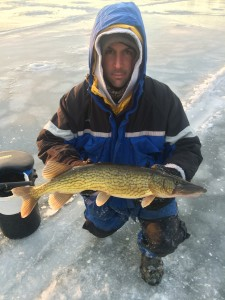 pickerel Feb , 2015